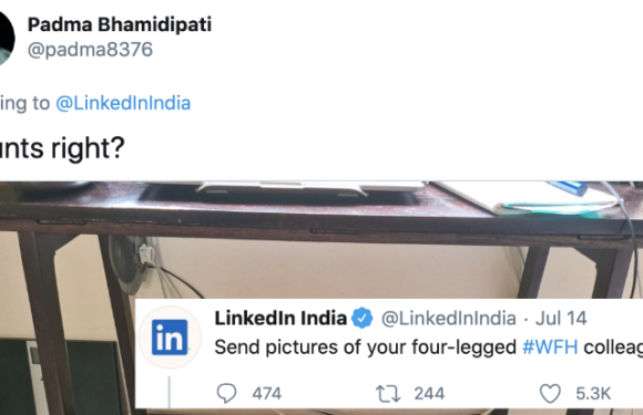 LinkedIn's promoted tweets!